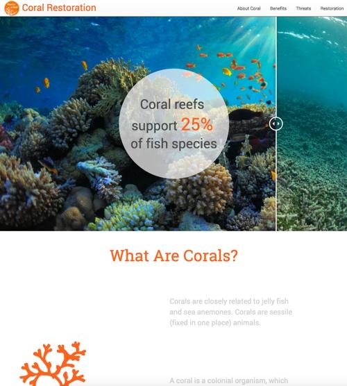 coral-website