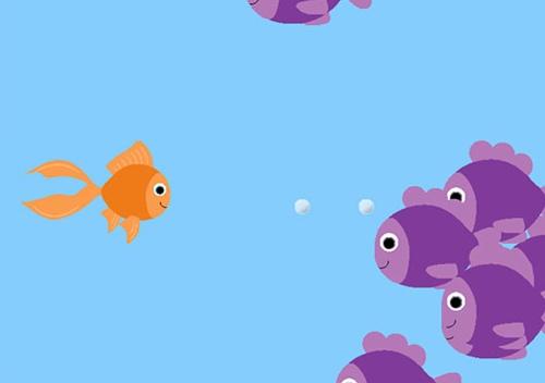 fish-code-1